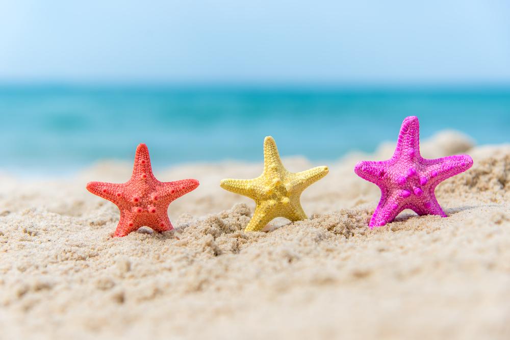 10 lanches saudáveis na praia