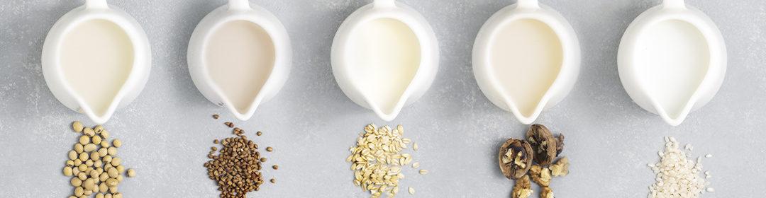 alimentação saudável sem lactose